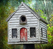 Steven Michael Photography And Art Framed Prints - Baltimore Woods Birdhouse Framed Print by Steven  Michael