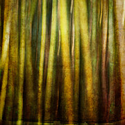 Bamboo Forest Framed Prints - Bamboo Abstract Framed Print by Ryan Hartson-Weddle