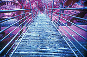 Bamboo Foot Bridge Print by Will and Deni McIntyre