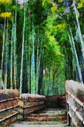 Bamboo Fence Prints - Bamboo Forest Print by Cathleen Cawood