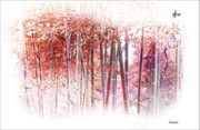 Bamboo Forest Framed Prints - Bamboo Framed Print by Eena Bo
