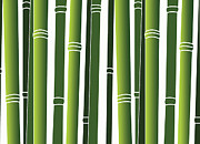 Going Green Prints - Bamboo Print by Jessica Rost