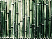 Backgrounds Metal Prints - Bamboo Wall Metal Print by M.taka