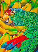 Bird Tapestries - Textiles Prints - Banana Amazon Print by Daniel Jean-Baptiste