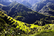Wonders Of The World Art - Banaue by Skip Nall