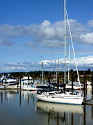 Docked Sailboats Posters - Bandon By the Sea Poster by Cindy Wright