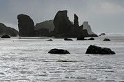 Haystack Rocks Prints - Bandon Silouettes Print by Bob Christopher