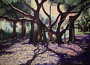 Florida Pastels - Banyan Tree on Old Cutler Road by Stephen Mack