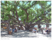 Lahaina Digital Art Prints - Banyan Tree Park Print by Joseph Vittek