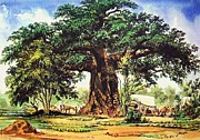 Baobab Paintings - Baobab Tree - South Africa by Pg Reproductions