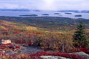 Bar Harbor Acrylic Prints - Bar Harbor Autumn Vista   Acrylic Print by George Oze