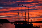 Bar Harbor Sunrise Print by Raymond Uzanas