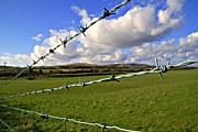 Barbed Wire Cloud Print by Lee Rees