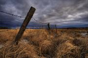 Harsh Prints - Barbed Wire Fence Posts With Dark Sky Print by Dan Jurak