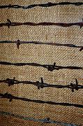LeeAnn McLaneGoetz McLaneGoetzStudioLLCcom - Barbed Wire Fencing