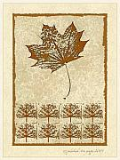 Earth Tone Prints - Bare trees and Maple Leaf Print by Pederbeck Arte Gruppe