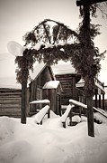 Barkerville Photos - Barkerville Winter  by Karen Cooper