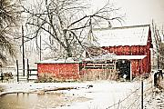 Fences Originals - Barn and Pond by Marilyn Hunt
