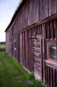 Barn Yard Prints - Barn Door Small Print by Steven Dunn