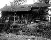 Toy Shop Prints - Barn Downsville Louisiana Print by Doug  Duffey