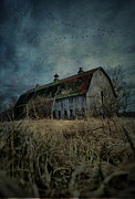 Abandoned Barn Posters - Barn Flight Poster by Emily Stauring