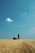 Field. Cloud Framed Prints - Barn In Crop Field Framed Print by Matteo Colombo