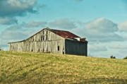 Barn Boards Prints - Barn in Ill Repir Print by Douglas Barnett