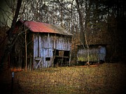 Old Barns Metal Prints - Barn in the Woods Metal Print by Joyce  Kimble Smith