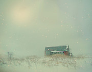 Abandoned Digital Art - Barn In Winter by Gothicolors With Crows