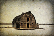 Abandonment Photo Framed Prints - Barn Framed Print by Larysa Luciw