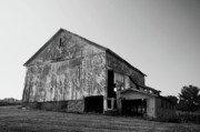Barns Digital Art Prints - Barn near Yellowsprings Print by Vijay Sharon Govender