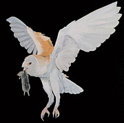 Ellenisworkshop Painting Metal Prints - Barn Owl Metal Print by Eric Kempson
