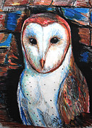 Old Barns Drawings Metal Prints - Barn Owl  Metal Print by Jon Baldwin  Art