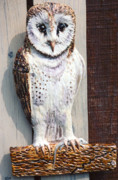 3-d Ceramics - Barn Owl Sculpture by Dy Witt