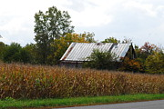 Old Barns Photo Originals - Barn series 4 by William Gerardino