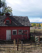 Sheffield Johnson - Barn