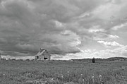 Donnie Smith - Barn Storm BW