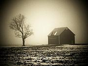 Tyree Prints - Barn Tree  Fog Print by Michael L Kimble