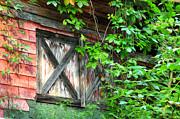 Barn Window Print by Bill Cannon