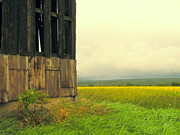 Pennsylvania Barn Print Prints - Barn With A View Print by Joe JAKE Pratt
