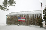 Icicles Prints - Barn with American Flag during Blizzard of 05 on Cape Cod Print by Matt Suess