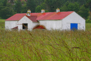 Red Roof Photos - Barn with Blue Door by Art Block Collections