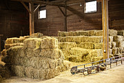 Stacks Posters - Barn with hay bales Poster by Elena Elisseeva
