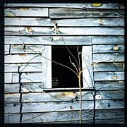 James Roberts - #barn #wood #window...