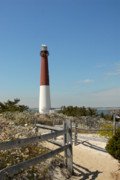Barnegat Inlet Photo Posters - Barnegat Lighthouse in Spring Poster by Joyce StJames