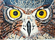 Owl Print Prints - Barney Day light Print by Lisa Brandel