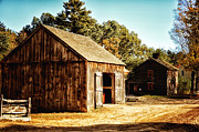 Barn Yard Digital Art Prints - Barnyard Print by Tricia Marchlik