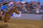 Straps Prints - Barrel Racer 1 Print by Sean Griffin