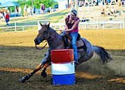 Quick Prints - Barrel Racer Rodeo Print by Peggy  Franz