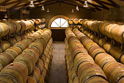 Napa Valley Vineyard Prints - Barrel Room Print by Eggers   Photography